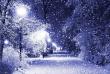 Синоптики розповіли, якою буде погода в грудні