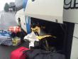 В автобусі «Прага – Драгово» виявили неочікувану знахідку