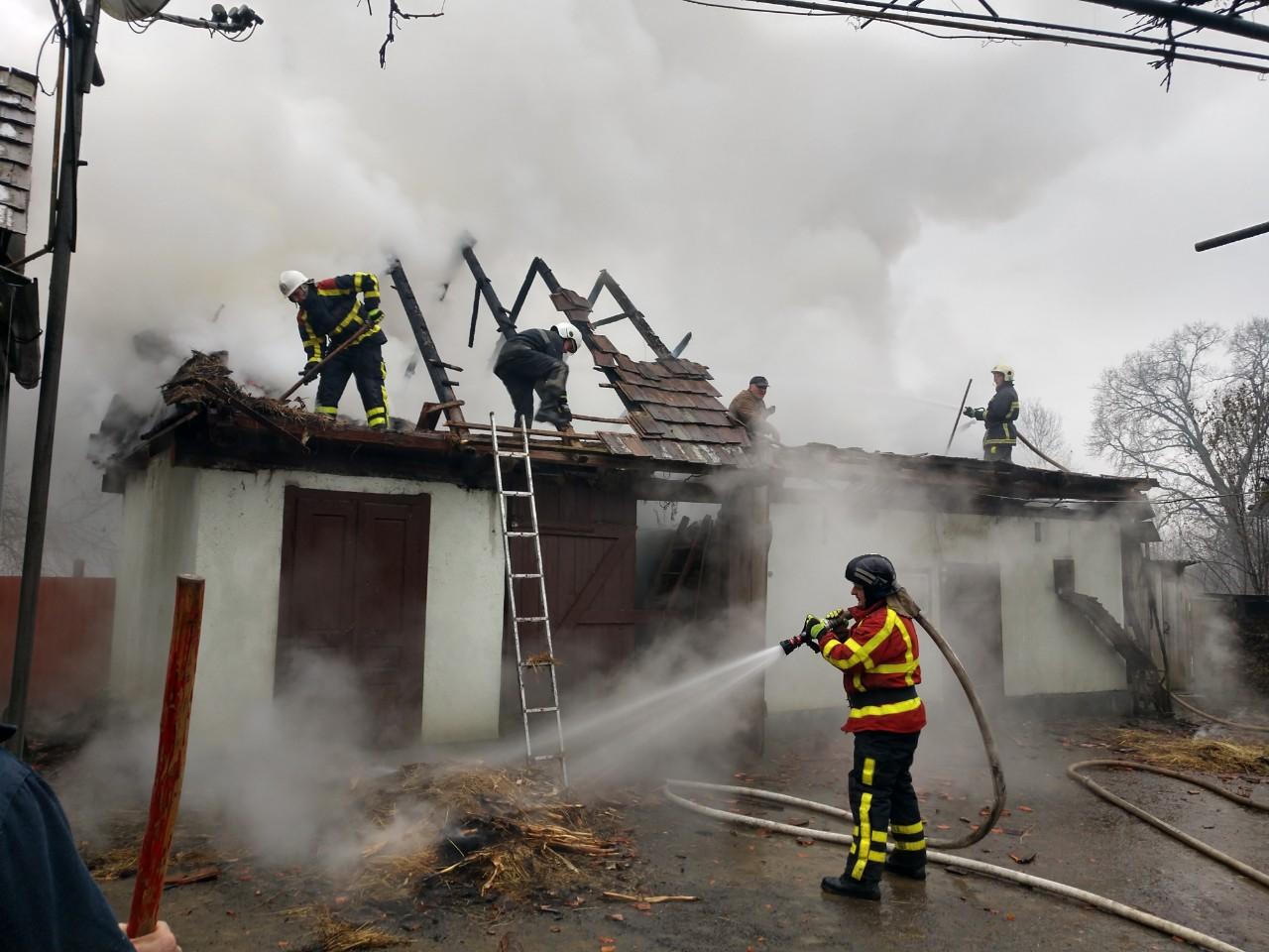 У чотирьох районах Закарпаття сталися пожежі