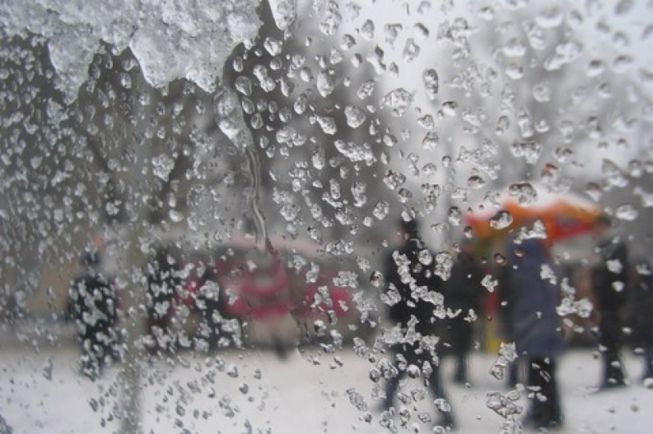 Справжньої зими на Закарпатті не буде ще тиждень: прогнози синоптиків