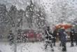 Зими на Закарпатті не буде ще тиждень: прогнози синоптиків