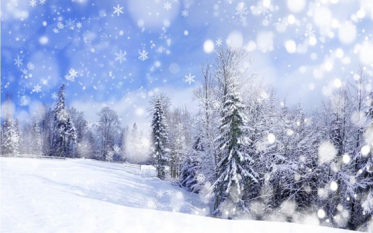 Синоптики попереджають закарпатців про сніг та мокрий сніг