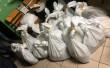 На Закарпатті СБУ виявила партію бурштину на понад півтора мільйона гривень