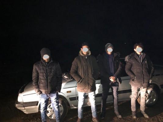 Переховувалися у лісі: прикордонники розповіли, як затримали нелегалів