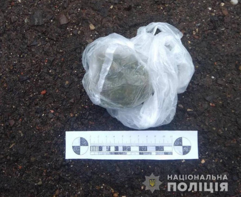 П'яний чоловік розгулював містом із пакетом марихуани в руках