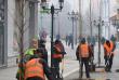 На площі Шандора Петефі в Ужгороді висадили дерева, за які проголосували містяни
