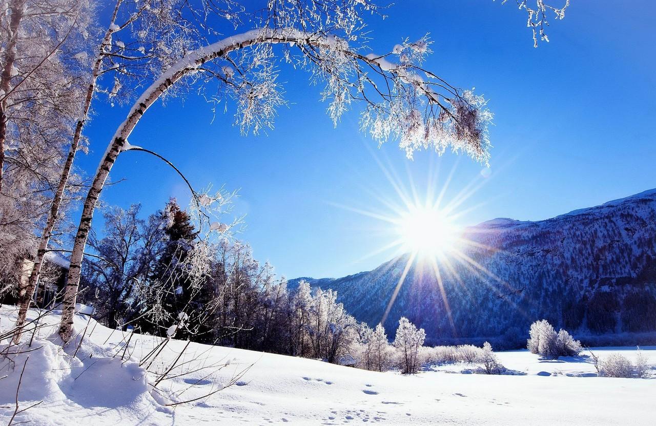 До кінця грудня синоптики прогнозують аномально теплу погоду в Україні