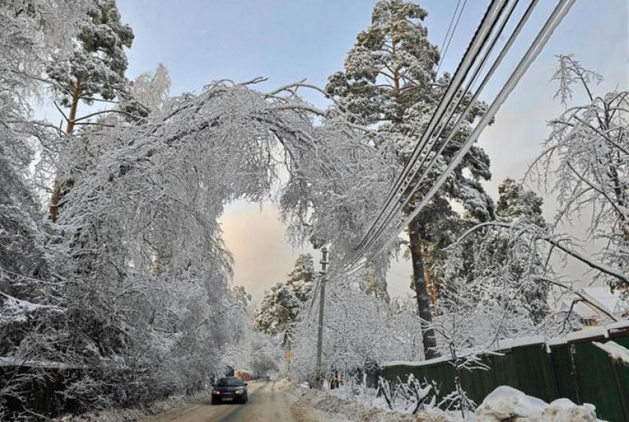Наслідки снігопаду на Закарпатті: без електропостачання залишилося 20 сіл Тячівського, Хустського та Рахівського районів