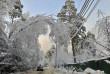 Наслідки снігопаду: без світла залишилося 20 закарпатських сіл