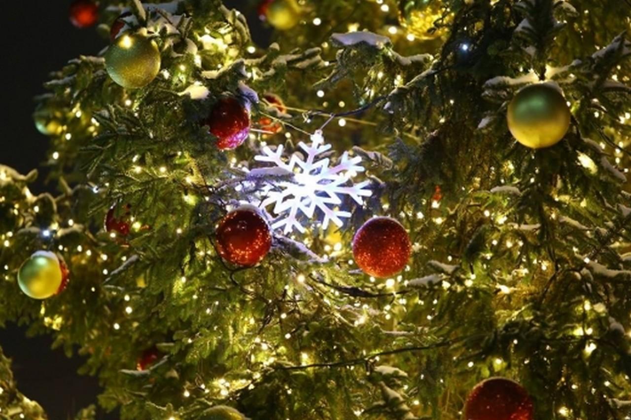 Новорічно-різдвяні заходи у Мукачеві: куди піти містянам у найближчі тижні