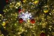 Новорічно-різдвяні заходи у Мукачеві: куди піти містянам