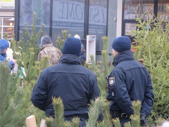 Лісівники Закарпаття провели понад півсотні рейдів із виявлення незаконних рубок новорічних ялинок