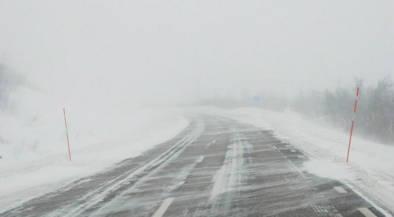 Туман, ожеледиці і паморозь: синоптики розповіли про погоду на Закарпатті на найближчу добу