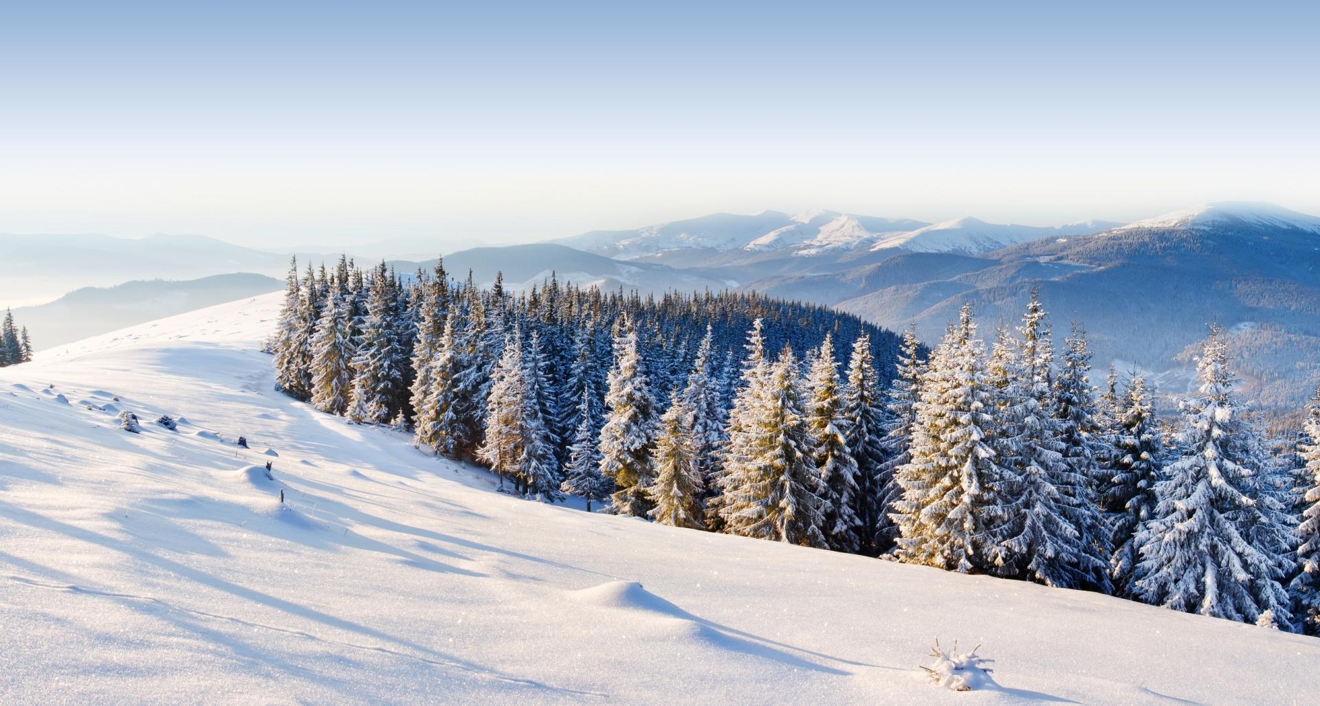 Найкращі зимові фото Українських Карпат з мережі Instargram