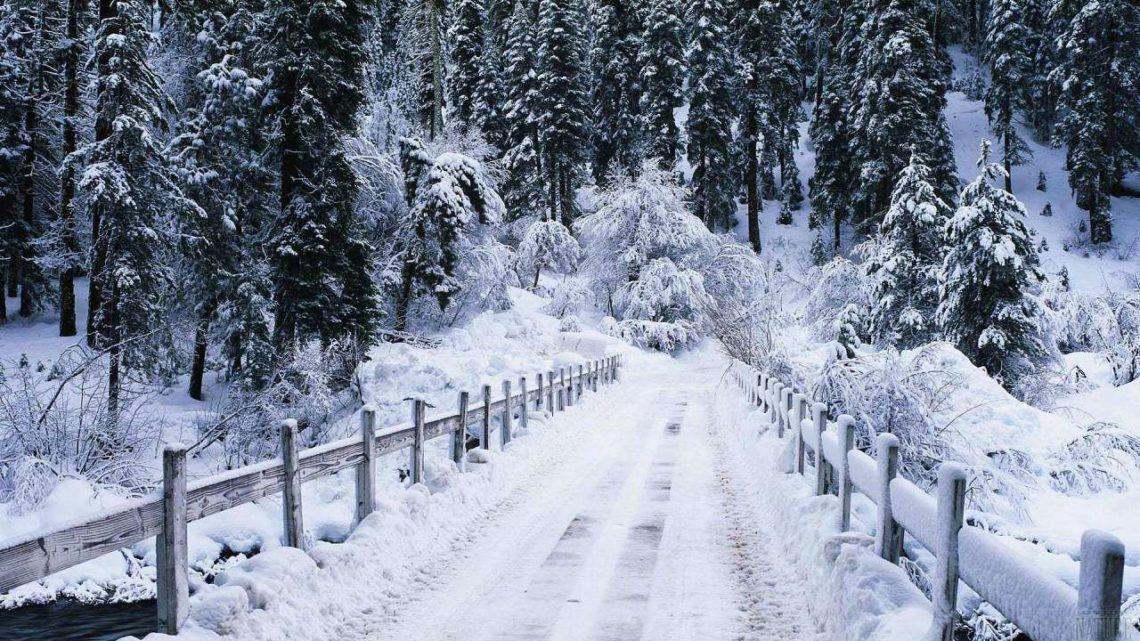 У перші дні 2019 року на Закарпатті очікуються сильний сніг, хуртовини і ожеледиця