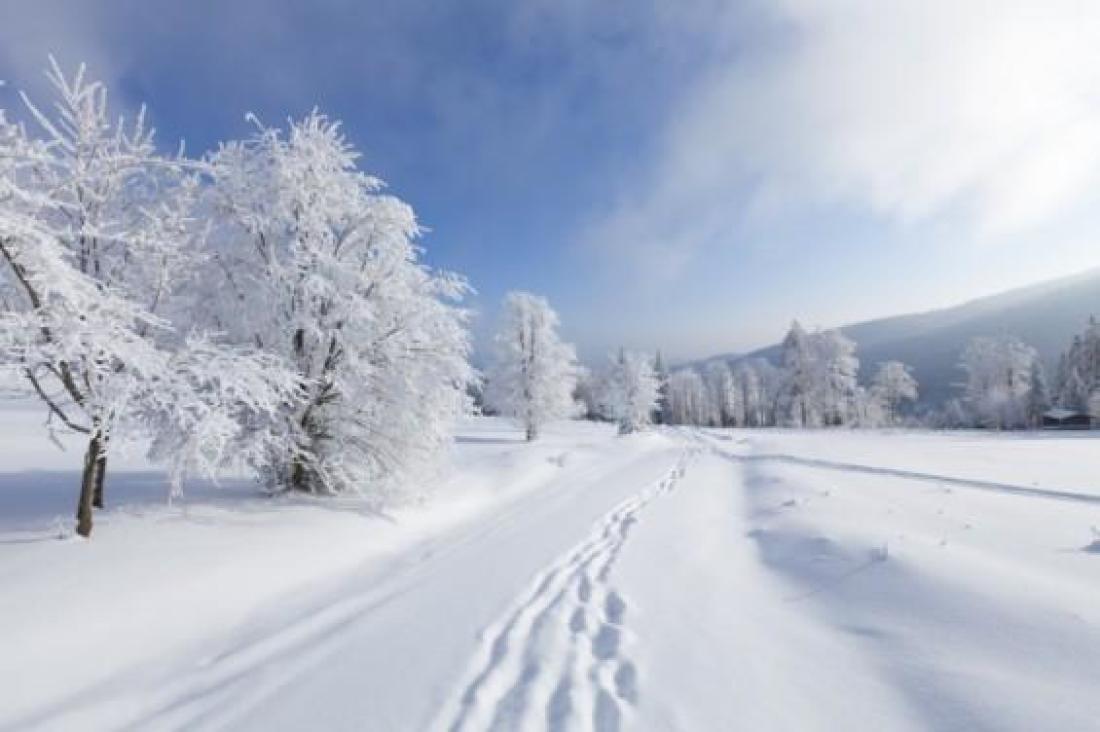 Зимовий циклон насувається на Закарпаття: очікується до 30 см снігу