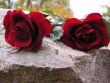 Поховали у весільній сукні: рідні розповіли про загибель їхньої доньки