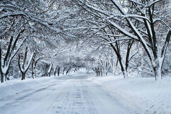 Прогнози синоптиків: на Закарпатті і надалі очікується сніг