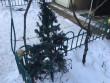 У Мукачеві горіла новорічна ялинка: врятовано хлопця