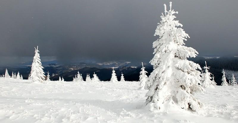 На Закарпатті в горах зник лижник із Харкова. Його шукали всю ніч