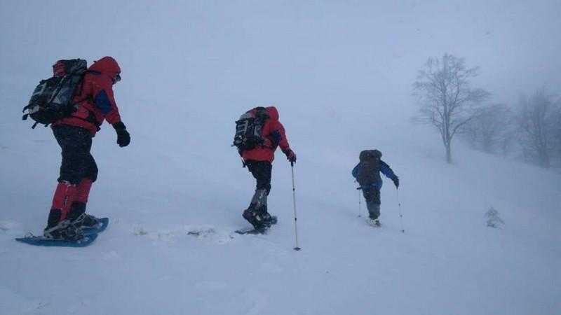 На Закарпатті рятувальники знайшли лижника із Харкова, який заблукав у районі гори Гимба вчора ввечері