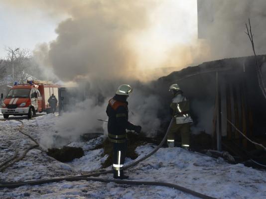 Пожежі в Ужгороді: рятувальники розповіли подробиці