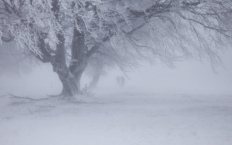 До 25 градусів морозу: синоптик Леонід Горбань розповів, якою в Україні буде погода в лютому