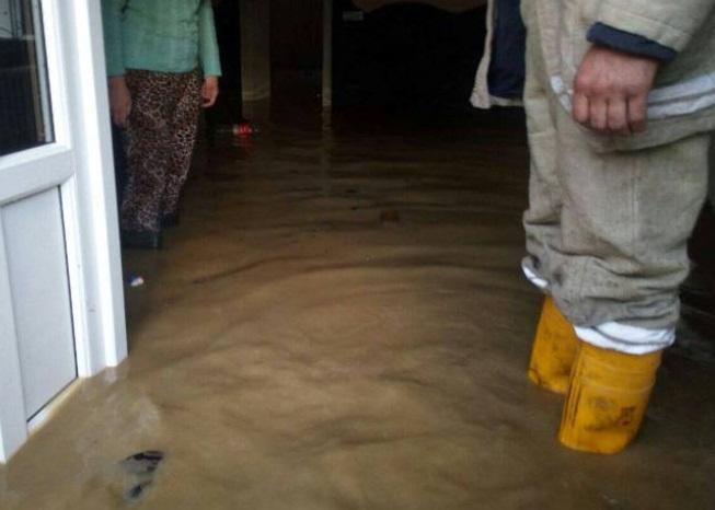 На Закарпатті внаслідок потепління почало підтоплювати будинки
