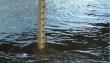На річках Закарпаття очікуються підйоми рівнів води