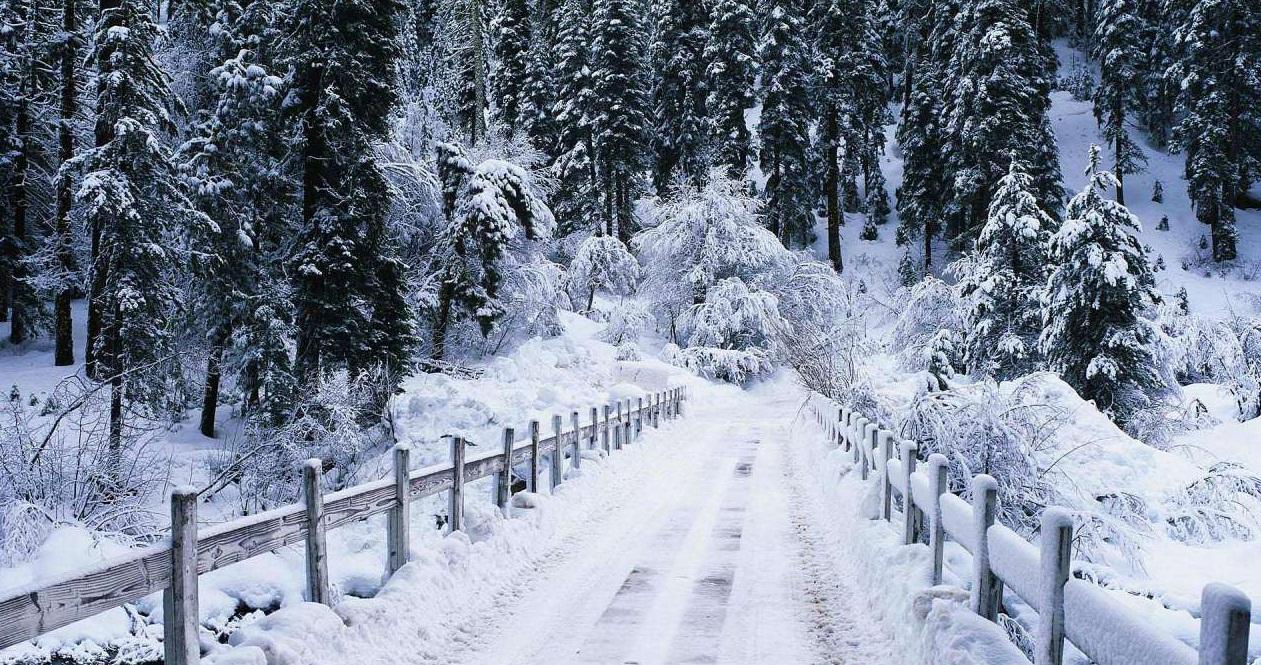 На Закарпаття 13 лютого суне арктичне повітря. Синоптики обіцяють мороз та сніг