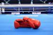 Мукачівські боксери здобули нагороди в Ужгороді