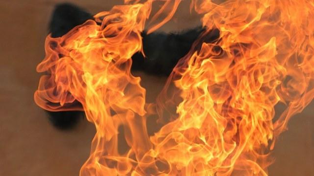 Цієї ночі під час пожежі у селищі Дубове загинув чоловік