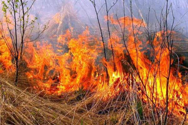 За добу рятувальники гасили 11 пожеж
