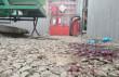 Оприлюднено фото з місця вбивства 20-річного мукачівця
