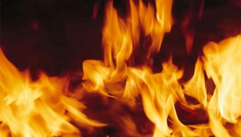 На Закарпатті 2 березня сталася масштабна пожежа. Пошкоджено 10 дерев'яних опор зв'язку