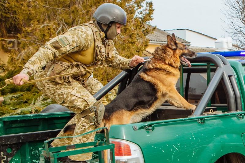 На Закарпатті прикордонники посилили охорону українсько-словацького кордону