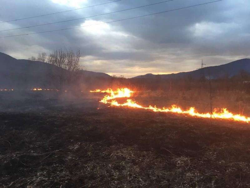За добу на Закарпатті вигоріло понад 50 га сухої рослинності