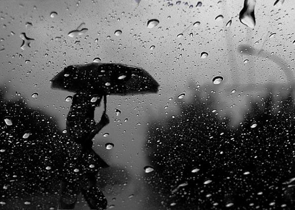 Дощі та пориви вітру: в Закарпатській області оголосили штормове попередження