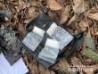 Закарпатські наркоторговці заробляли в місяць майже мільйон гривень. Суд обрав їм запобіжний захід