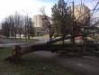 В Ужгороді нічна негода наробила біди