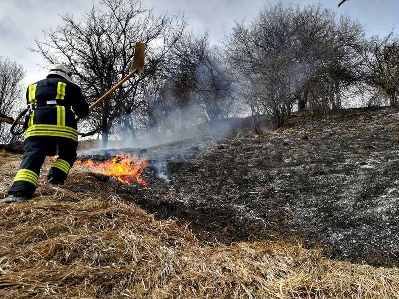 Через загорання сухостою в Ужгороді ледве не згорів житловий будинок