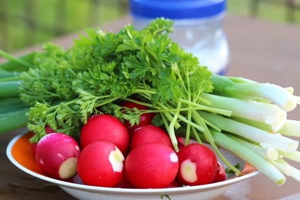 Рання городина вже на ринках Закарпаття: фахівці попереджають про високий вміст нітратів у редисці