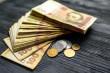 Жителі Іршавщини розповіли, як їм вдається жити без заробітків і пристойно заробляти