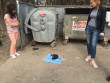 У Мукачеві на смітник викинули новонароджених цуценят