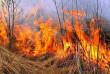 Через спалювання сухої трави поблизу Мукачева згоріла дача