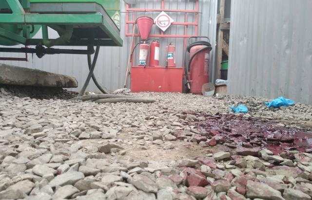 Закарпатська поліція просить допомогти знайти хлопця, якого підозрюють у вбивстві мукачівця