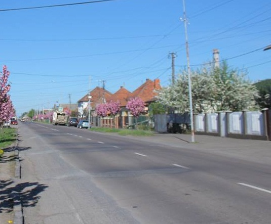 Від завтра у Мукачеві частково перекриють проїзну частину вулиці Ужгородської