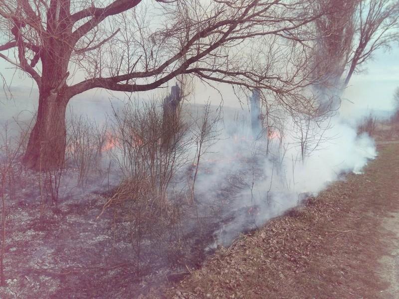 Двоє чоловіків мають сплатити штраф за підпал сухостою біля села Велятино