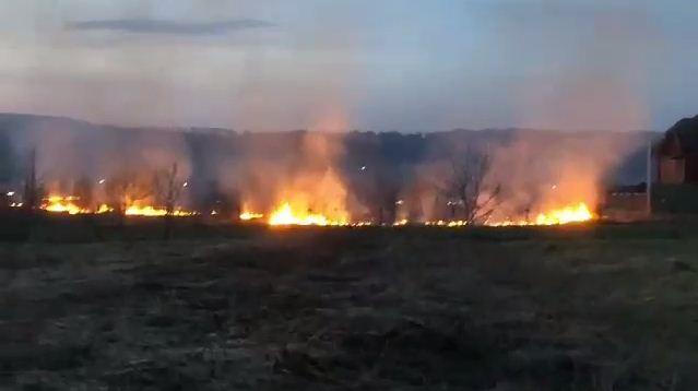 На Закарпатті на межі Тячівського і Рахівського районів спалахнула масштабна пожежа