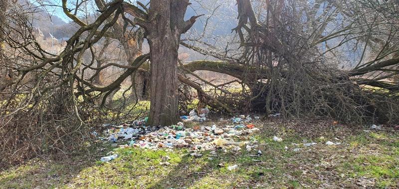 В Ужгороді сміттям завалена зона відпочинку на березі річки Уж